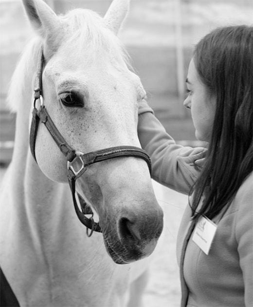 Je kunt van alles leren over leiderschap, het paard tilt dit 'alles' naar een heel ander niveau door je leiderschap te laten <span class='color-yellow'>ervaren</span>