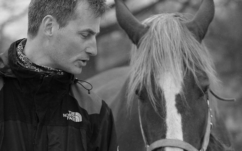 Het paard is niet kapot; je moet het gewoon leiden!